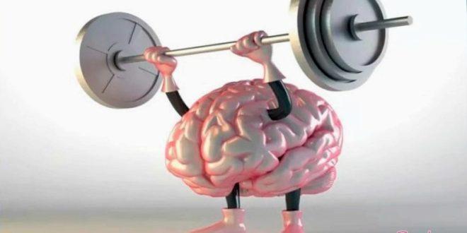 Как вынудить мозг работать и мыслить стремительнее
