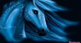 Как встречать год голубой лошадки и в чем