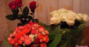 Какие непосредственно цветочки подарить в различных обстановках