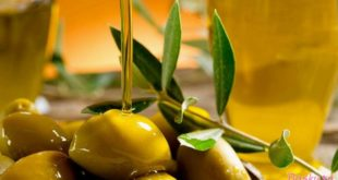 полезность оливкового масла