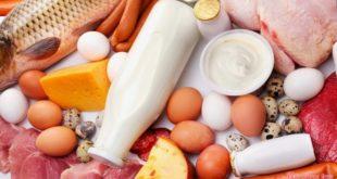 Значение белков для организма человека и их источники